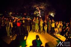 Querbeat 2013